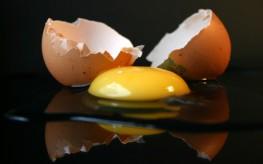 eggs as bad as cigarettes