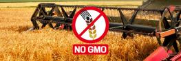 US Grain Terminal Goes GMO-FREE to Meet Consumer Demand