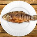 Fish mercury levels 1 4 freshwater fish exceed 39 safe for Fish with least mercury