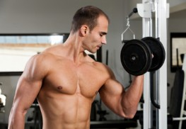 Building Muscle Tone and Muscle Mass - Attaining Your Desired Physique