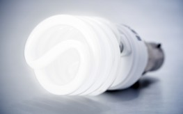 Choose Between Carcinogenic Light Bulbs or Excessive Prices