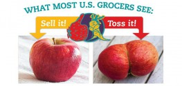Grocery Stores Throw out 26% of Produce Due to 'Ugliness'