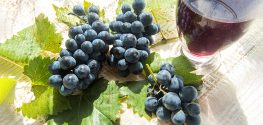 Resveratrol may Benefit Your Arteries, Especially if You Have Type 2 Diabetes