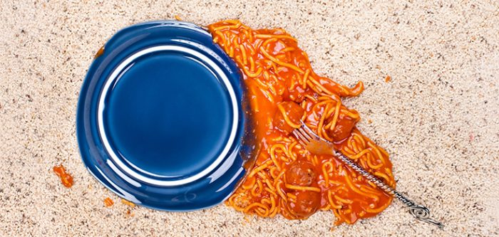 How True Is The 5 Second Rule When You Drop Food On The Floor