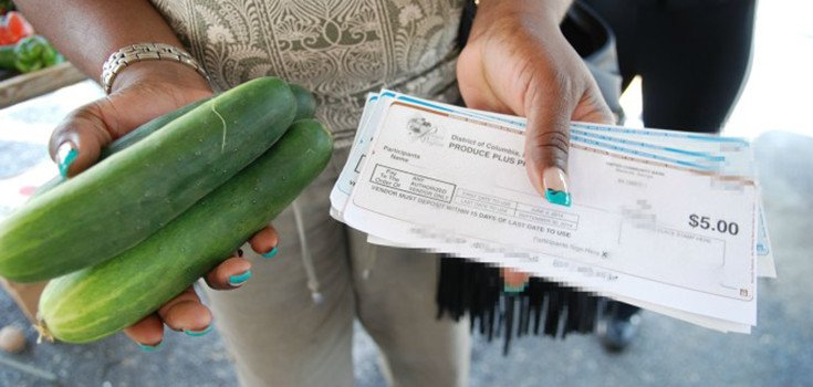 food-stamps-money-produce-735-350