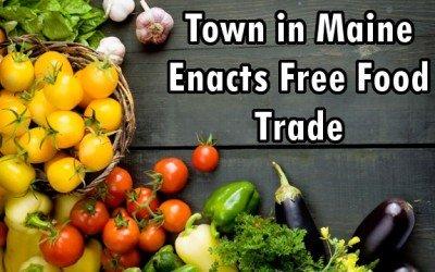 free food trad
