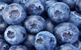 Health Benefits of Blueberries - Anti-aging, Weight Loss, and More