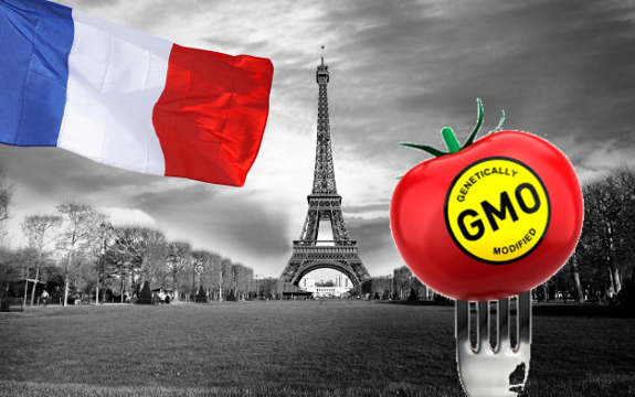 Restrictions on Genetically Modified Organisms: France ...