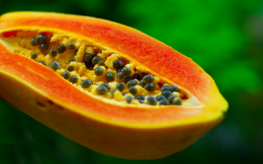 The Natural Benefits of Papaya Leaf Extract
