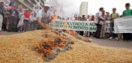 Brazil Admits Monsanto's Roundup Is Causing Cancer After Approving 3 GMO Crops