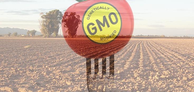 gmo-destroying-farm-monsanto
