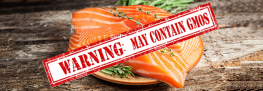 Huge: Spending Bill Forces FDA to Label the New GM Salmon
