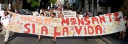 What the 'Monsanto Law' in South America has Done to Farmers' Rights