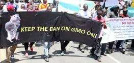 Activists in Kenya Protest Against GMO Food Introduction