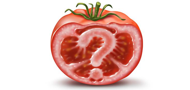 gmo-tomato-question-735-350