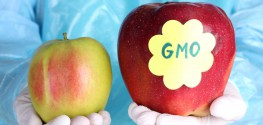 Monsanto Brings on Academics to Push 'Benefits of GMOs'