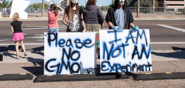GMO Labeling Sweeping Nation: Arizona May Soon Enforce Labels