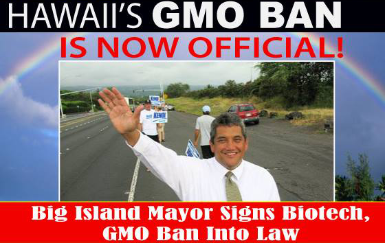 gmo ban