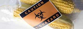 Breaking News: Germany can Use 'Opt Out' to Ban GM Crops by September 11th