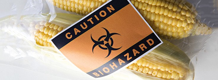 gmo_corn_Caution_beware_735_270