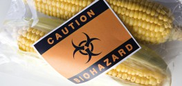 Leading Geneticist: 'Health Damaging Effects' of GMOs Unpredictable
