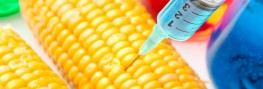 EU Committee Wants to Demolish Existing Law Allowing Member States to Ban GMOs