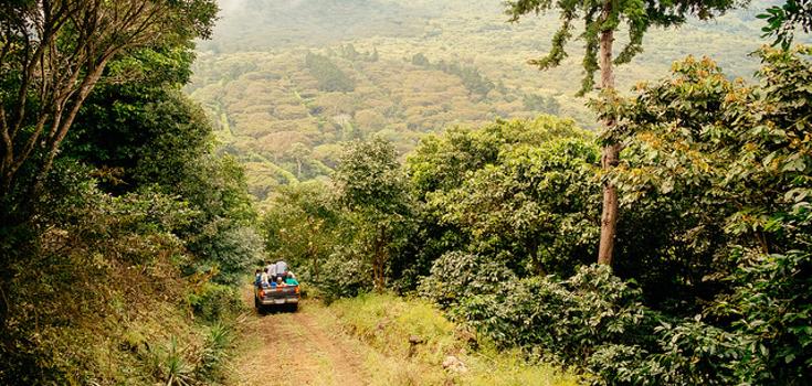 BIG WIN! El Salvador Farmers Kick Monsanto Out