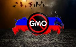 Russia GMO