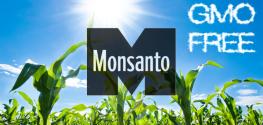 Monsanto Tries to Overturn GMO Ban Despite 66% Majority Vote