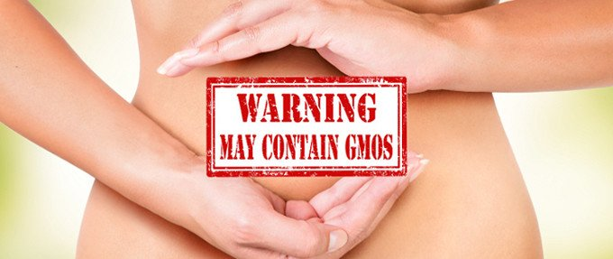 gmo_gut_digestion_health_680