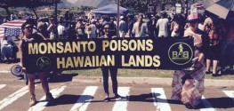 Huge Anti-GMO Rallies Popping Up in Hawaii