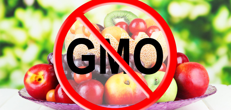 gmo_label_food_no_735_350