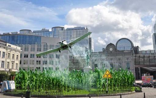 gmo pesticides
