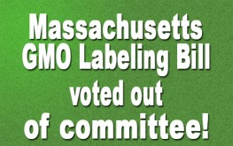 Massachusetts GMO labeling