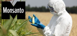 Monsanto 'Deliberately Covered Up Data' Proving Glyphosate is Cancerous for 4 Decades