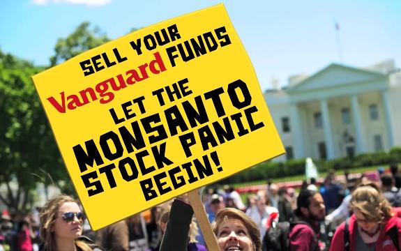 Monsanto stock plunge