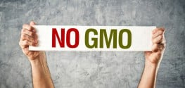 Breaking: Maine Introduces Bill to Label GMOs NOW