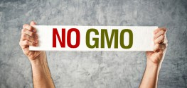 Why Anyone Who Questions the Safety of GMOs is Labeled Anti-Science