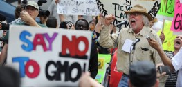 Oregon's GMO Labeling Measure Defeated by Monsanto's Millions