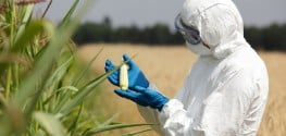 Column in Medical Journal Says Hazards of GMOs, Pesticides Not Properly Studied