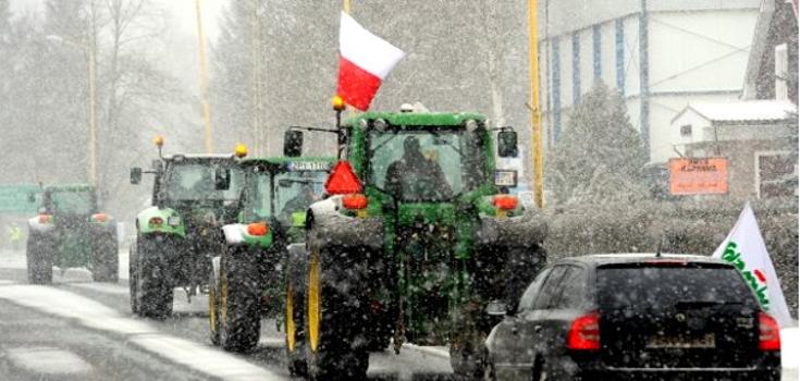 gmo_poland_protest_tractors_735_350