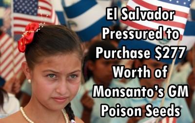 GMO El Salvador