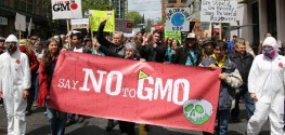 Breaking News:  New York Moves Forward with GMO Labeling Bills