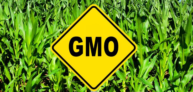 gmo_sign_crops_736_350