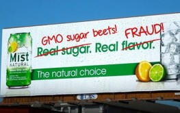 Even 'Natural' Sodas with 'Real Sugar' Being Sold with GMO Sugar