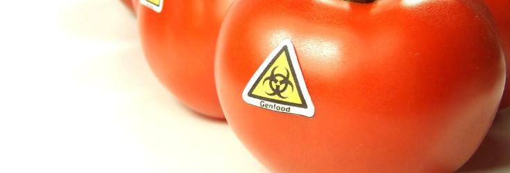 gmo_tomatoes_toxic_735_250