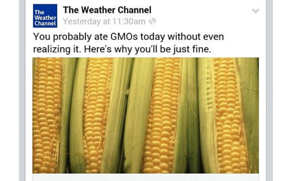 GMO weather channel