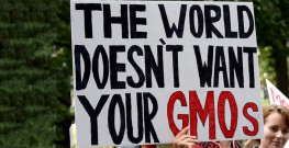 Anonymous Scientists Say Their Work is Suppressed on GMOs, Neonics