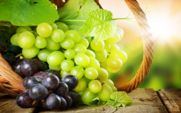 Grapes Provide Powerful Vision-Promoting Properties