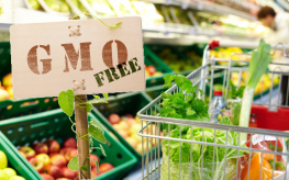 gmo grocery shopping